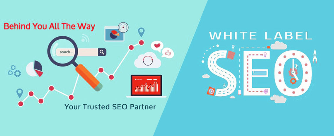 White Label SEO in Delhi